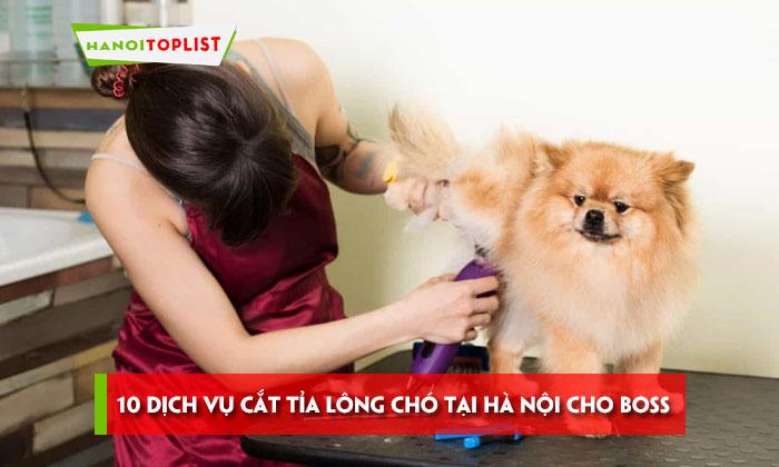 10-dich-vu-cat-tia-long-cho-tai-ha-noi-cho-boss-cuc-xinh