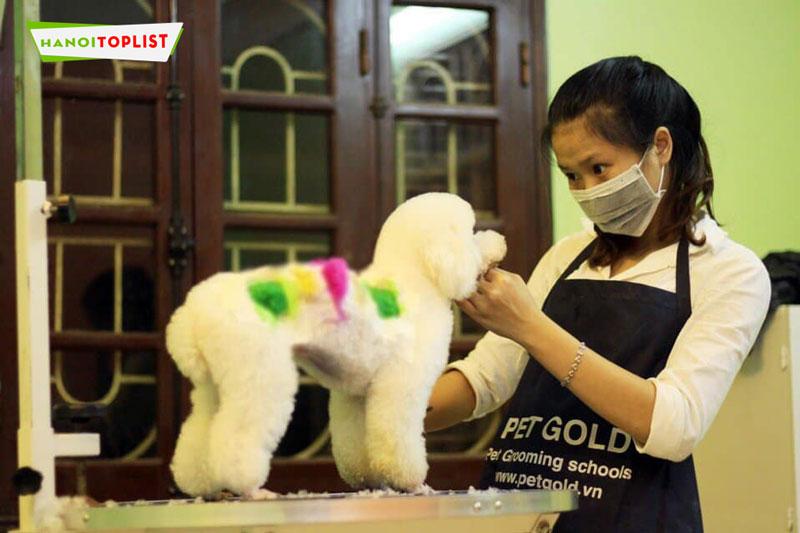 pet-gold-hanoitoplist