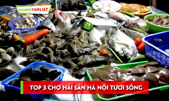 top-3-cho-hai-san-ha-noi-tuoi-song-khong-the-bo-qua