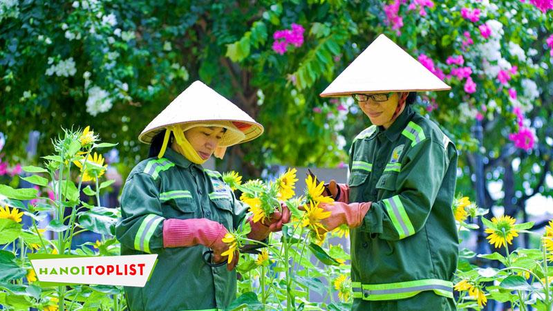 cong-ty-cp-green-homes-viet-nam-hanoitoplist