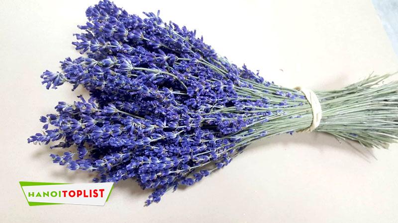 shop-lavender-hanoitoplist
