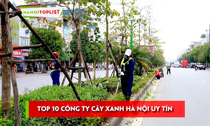 top-10-cong-ty-cay-xanh-ha-noi-cuc-ki-uy-tin