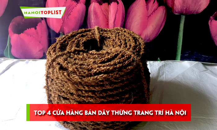 top-4-cua-hang-ban-day-thung-trang-tri-ha-noi-gia-re