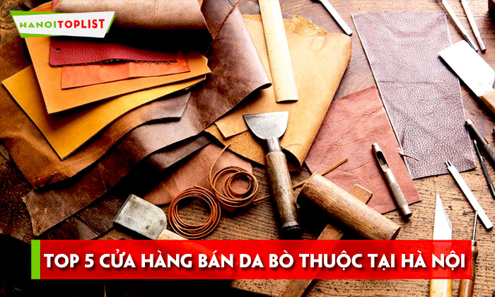 top-5-cua-hang-ban-da-bo-thuoc-ha-noi-uy-tin-chat-luonghanoitoplist