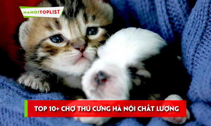 top-10-cho-thu-cung-ha-noi-chat-luong-va-gia-tot-nhat