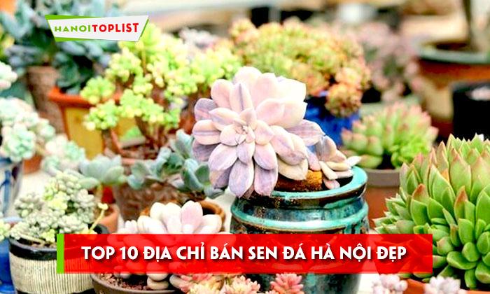 top-10-dia-chi-ban-sen-da-ha-noi-dep-va-chat-luong-nhat