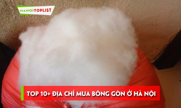 top-10-dia-chi-mua-bong-gon-o-ha-noi-re-nhat