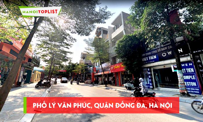 pho-ly-van-phuc-quan-dong-da-ha-noi