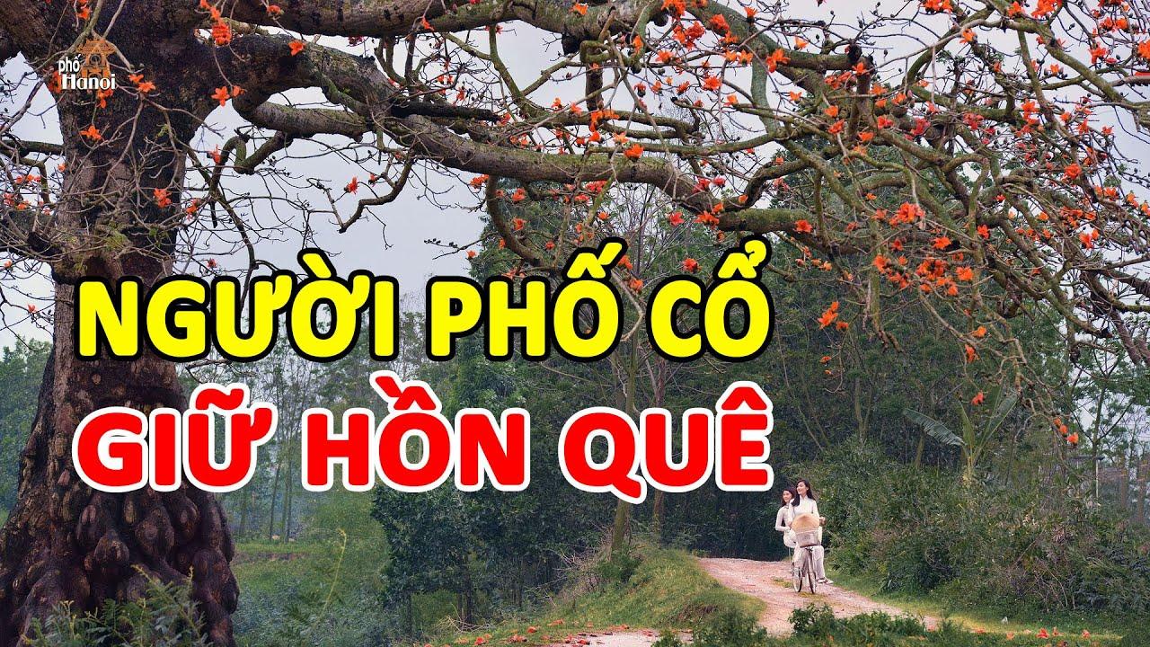 Đến thăm nhà người Hà Nội giữ hồn quê từ khi nghèo khó tới lúc thành công #hnp