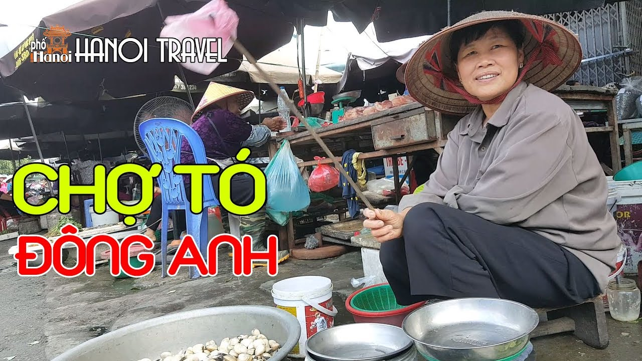 Đột phá Chợ quê lớn nhất TT Đông Anh - Chợ tó #hnp