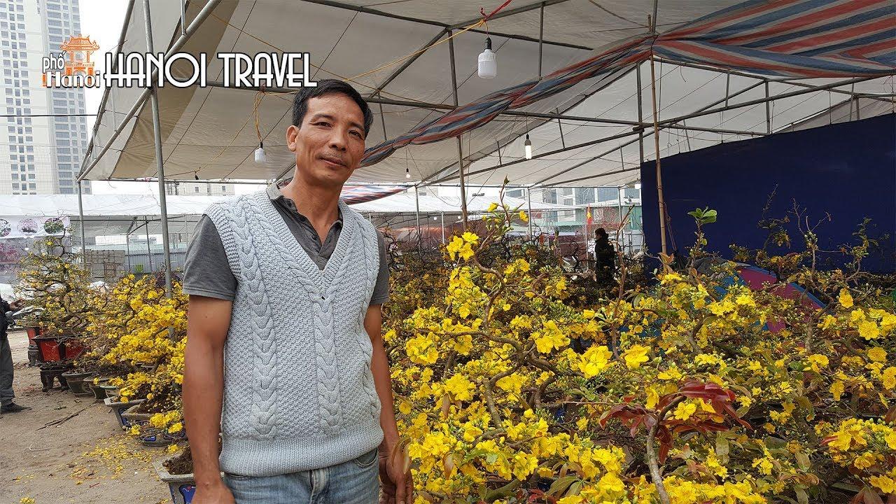 Ông chủ Vườn Mai Tết người Bình Định mang gì ra Hà Nội #hnp