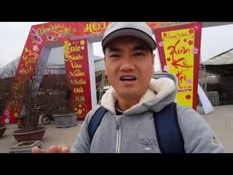 Toàn cảnh chợ hoa Tết Kỷ Hợi lớn nhất nhì Hà Nội #hnp