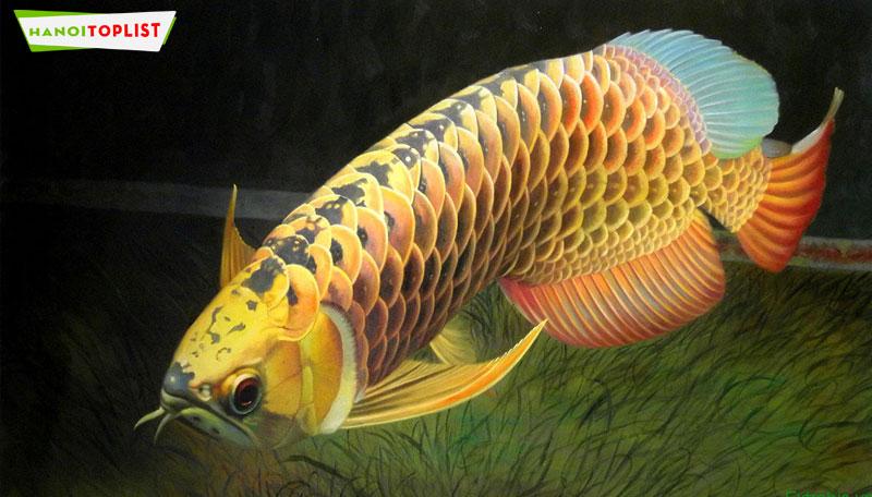 kin-aqua-hanoitoplist
